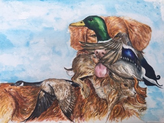 ''Duck Tolling Who?'' A4, watercolours [sold]