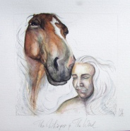 Paard Verzameld Collective challenge 'whisper'. 20x20cms, watercolour and pencil [available]