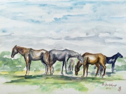 Paard Verzameld Collective meeting 'Paardenkamp II'. A4, watercolours [available]